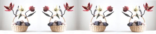 flower_collage2